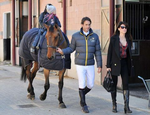 Clothing, Horse supplies, Bridle, Halter, Coat, Outerwear, Rein, Working animal, Horse, Jacket,