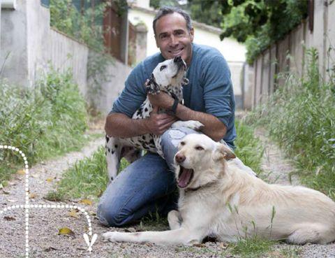 Human, Vertebrate, Dog, Dog breed, Mammal, Carnivore, Sporting Group, Companion dog, Canidae, Animal training,