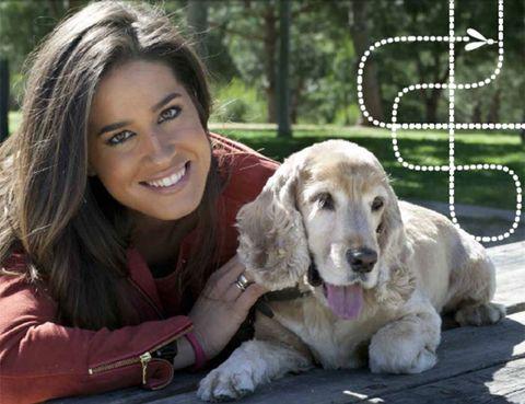 Dog breed, Dog, Vertebrate, Carnivore, Mammal, Sporting Group, Comfort, Companion dog, Tooth, Fur,