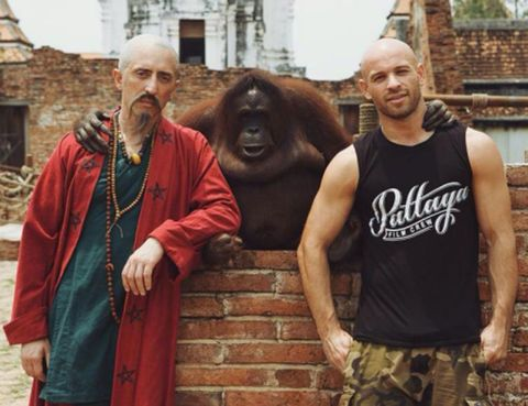Primate, Interaction, Temple, Terrestrial animal, Facial hair, Maroon, Sleeveless shirt, Beard, Snout, Wrinkle,