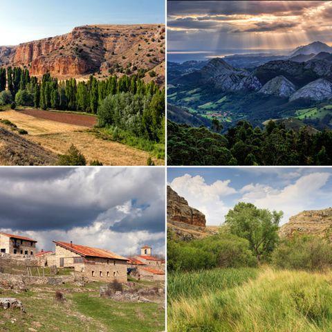 Nature, Vegetation, Natural landscape, Mountainous landforms, Highland, Landscape, Plant community, Land lot, Mountain, Rural area,