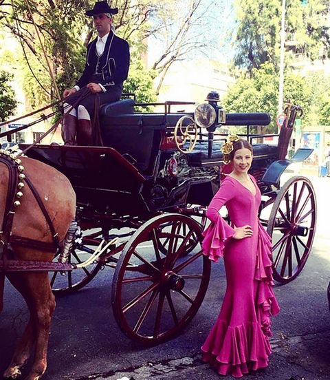 Wheel, Carriage, Transport, Spoke, Working animal, Dress, Bridle, Classic, Horse supplies, Halter,