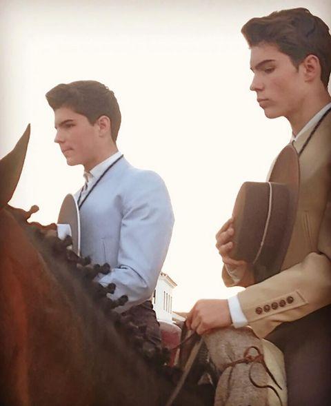 Ear, Human body, Horse tack, Horse supplies, Horse, Rein, Liver, Bridle, Working animal, Blazer,