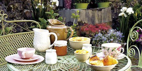 Serveware, Dishware, Furniture, Table, Cup, Flowerpot, Tableware, Porcelain, Lavender, Teacup,