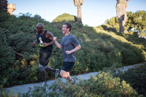 Plant, Recreation, Endurance sports, Outdoor recreation, Running, Exercise, Jogging, Shrub, Long-distance running, Individual sports,