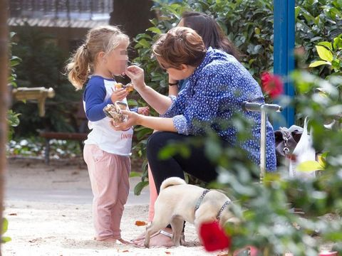 Human, Vertebrate, Mammal, Dog breed, Interaction, Dog, People in nature, Carnivore, Sharing, Garden,