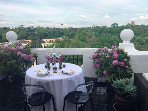Tablecloth, Plant, Petal, Table, Furniture, Flowerpot, Linens, Shrub, Home accessories, Lavender,