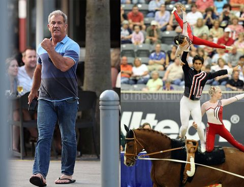 Jeans, Denim, Sport venue, Mammal, Horse, T-shirt, Horse supplies, Bridle, Animal sports, Sports,