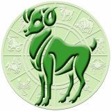 Green, Terrestrial animal, Circle, Teal, Symmetry, Symbol,