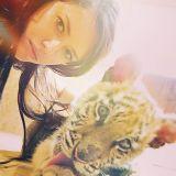 Cheek, Yellow, Fun, Hairstyle, Skin, Eyebrow, Photograph, White, Felidae, Mammal,