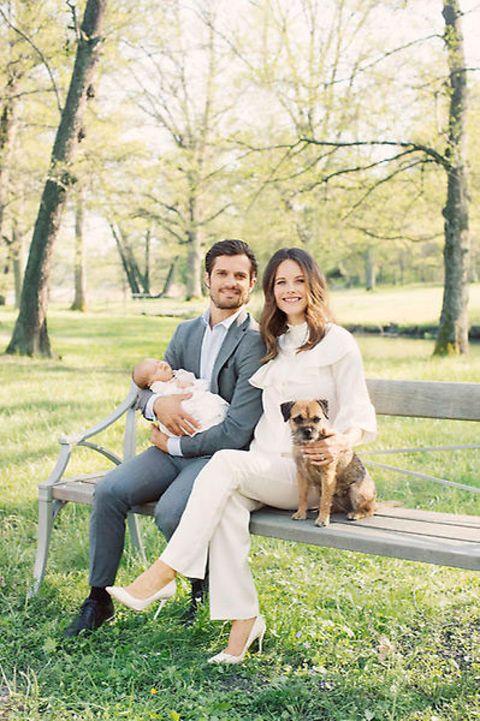 Human, Dog breed, Vertebrate, Mammal, Tree, Dog, Carnivore, People in nature, Sitting, Companion dog,