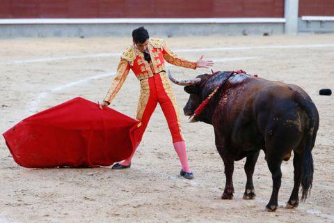 Matador, Bull, People, Sport venue, Human body, Entertainment, Bullring, Bovine, Human leg, Red,