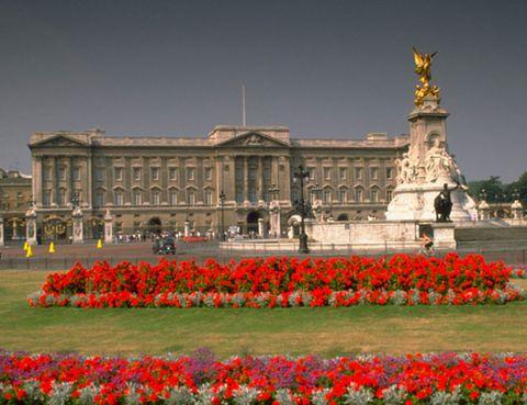 Plant, Flower, Petal, Garden, Landmark, Tourism, Facade, Palace, Metropolitan area, Town square,