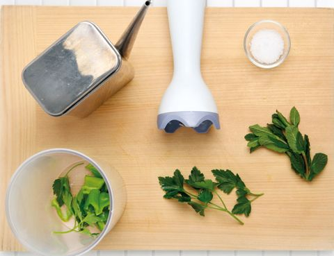 Leaf, Dishware, Leaf vegetable, Kitchen utensil, Office supplies, Ingredient, Tool, Fines herbes, Office instrument, Herb,
