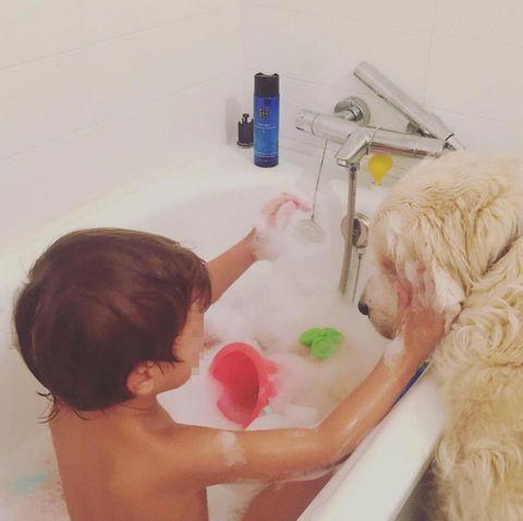 Product, Fluid, Child, Bathing, Interaction, Paint, Baby bathing, Brush, Toddler, Bathtub,