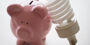 cerdo bombilla factura luz ahorro