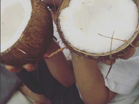 Drum, Musical instrument, Coconut, Plant, Membranophone, Rebana,