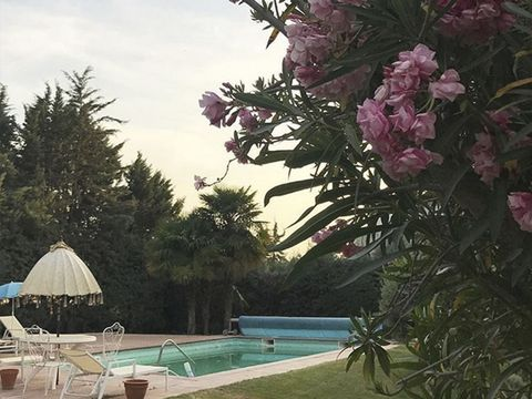 Swimming pool, Resort, Umbrella, Petal, Outdoor furniture, Sunlounger, Shade, Resort town, Villa, Rhododendron,