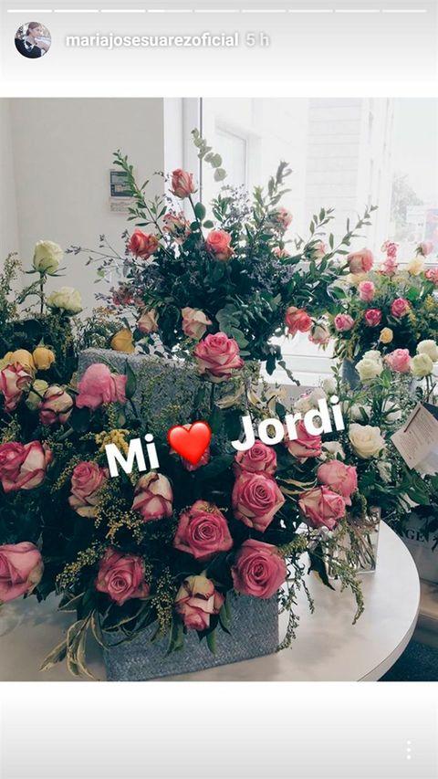 Flower, Floristry, Flower Arranging, Plant, Floral design, Bouquet, Pink, Cut flowers, Rose, Garden roses,