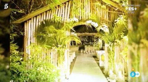 Tree, Plantation, Botany, Architecture, Hacienda, Building, Real estate, Arch, House, Plant,