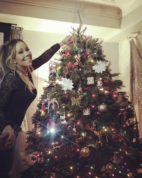 Christmas tree, Christmas, Christmas ornament, Tree, Christmas decoration, Christmas eve, Sky, Beauty, Plant, Woody plant,