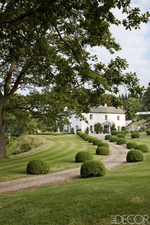 the front drive of penny morrison's welsh home is lined with boxwood balls she and her husband planted 25 years ago