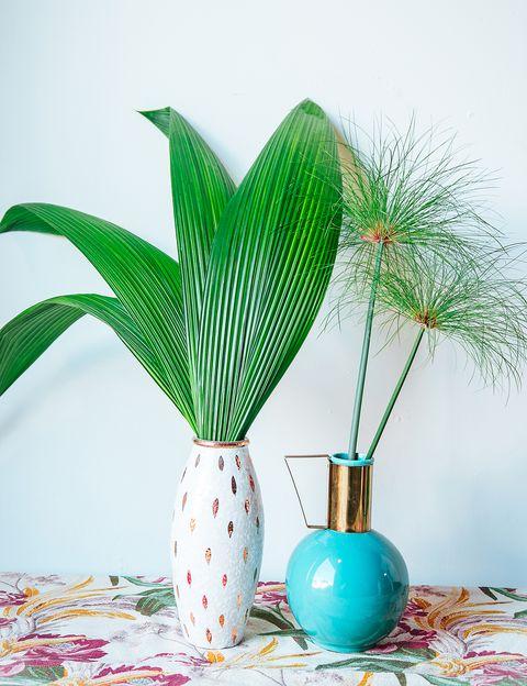 Leaf, Botany, Turquoise, Teal, Terrestrial plant, Aqua, Vase, Flowering plant, Still life photography, Design,