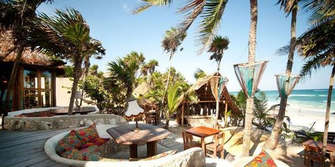 Resort, Woody plant, Arecales, Outdoor table, Outdoor furniture, Shade, Tropics, Palm tree, Seaside resort, Outdoor structure,