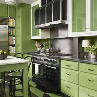 <p>The kitchen cabinets are painted in Benjamin Moore's Courtyard Green&#x3B; the stove is by BlueStar, and the floor is laser-cut linoleum.</p>