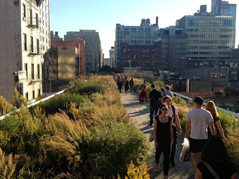 Plant, Neighbourhood, Urban area, Building, Residential area, City, Metropolitan area, Apartment, Urban design, Suburb,