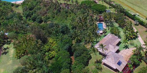 Vegetation, Property, Landscape, Plant community, Land lot, Real estate, Aerial photography, Residential area, Shrub, Groundcover,