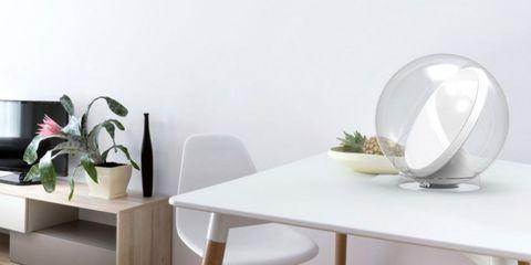 Table, Furniture, Flowerpot, Interior design, Dishware, Artifact, Houseplant, Ceramic, Vase, Porcelain,
