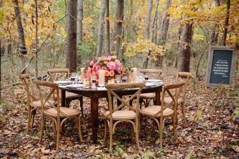Deciduous, Leaf, Table, Furniture, Outdoor table, Outdoor furniture, Petal, Forest, Autumn, Woodland,