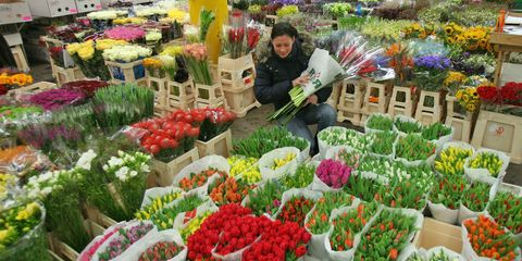 Public space, Marketplace, Retail, Market, Flower, Whole food, Trade, Garden, Natural foods, Bazaar,