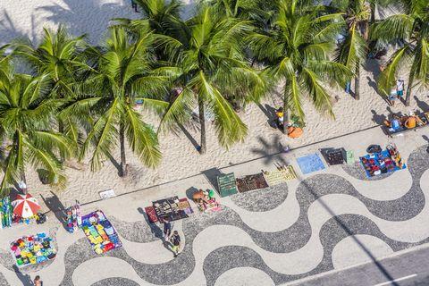 Arecales, Woody plant, Urban design, Palm tree, Tropics, Attalea speciosa, Coconut, Painting,