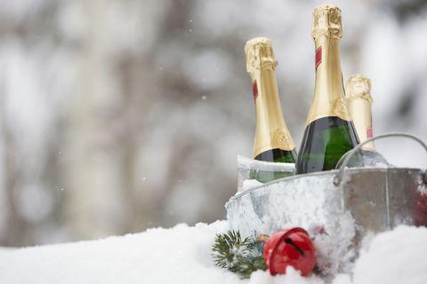 Glass bottle, Bottle, Winter, Wine bottle, Drink, Drinkware, Carmine, Champagne, Flowering plant, Freezing,