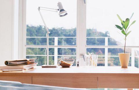 Serveware, Glass, Dishware, Wing, Flowerpot, Flight, Porcelain, Pottery, Plywood, Ceramic,