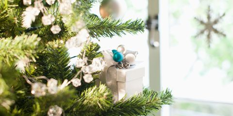 Branch, Christmas decoration, Woody plant, Twig, Christmas ornament, Holiday, Christmas, Evergreen, Natural material, Christmas tree,