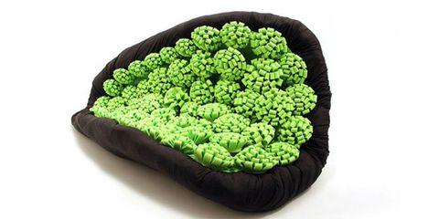 Green, Leaf, Colorfulness, Green algae,