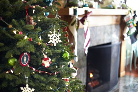 Event, Christmas decoration, Christmas tree, Holiday, Christmas ornament, Woody plant, Christmas eve, Holiday ornament, Christmas, Interior design,