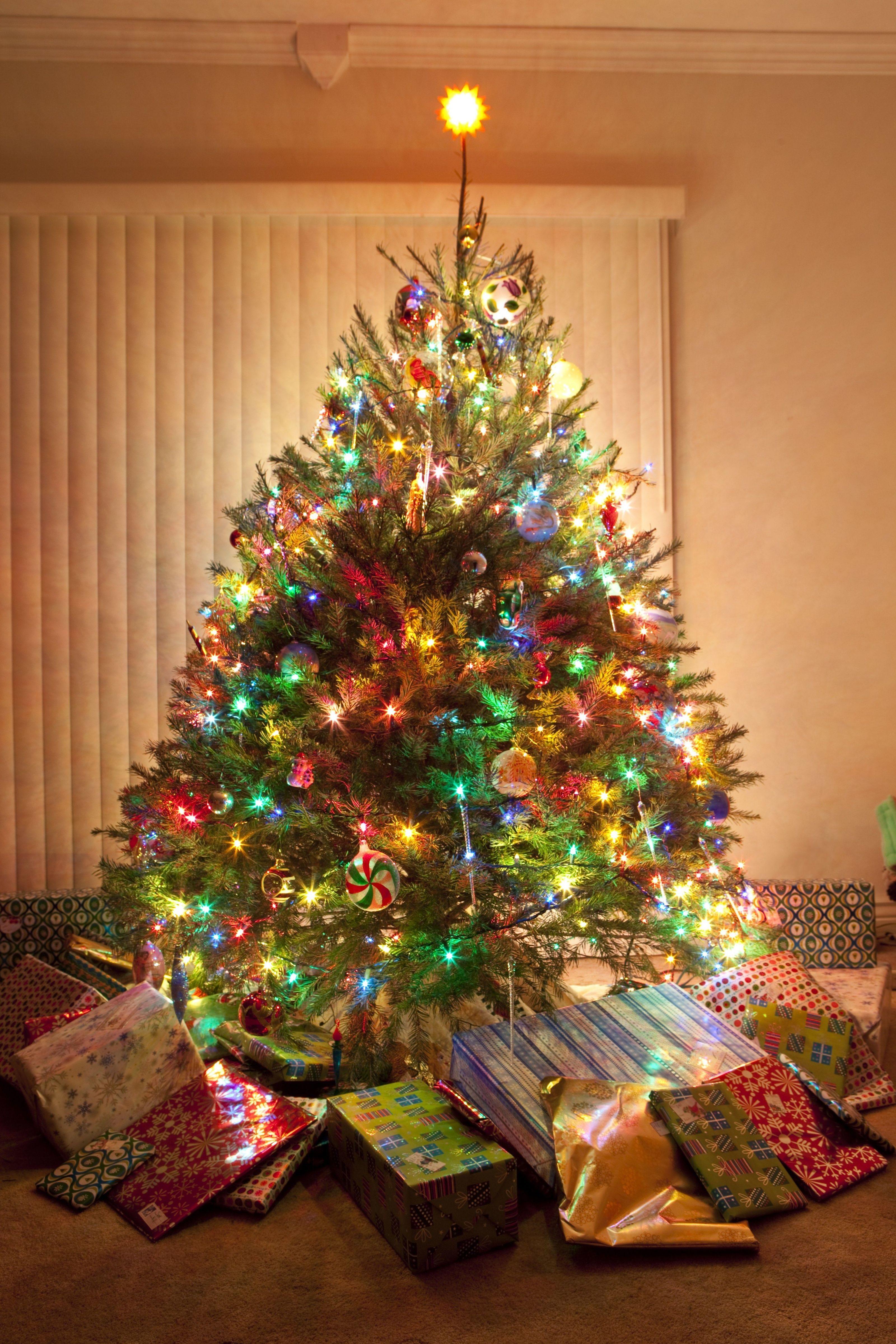 White Christmas Lights Or Colored Christmas Lights