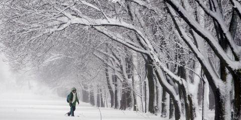 14 Amazing Photos Of History's Worst Blizzards