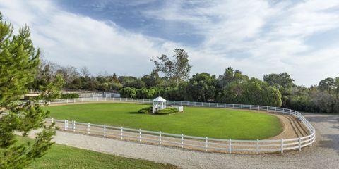 Oprah California Horse Farm