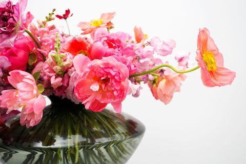 Petal, Flower, Pink, Flowering plant, Botany, Cut flowers, Flower Arranging, Centrepiece, World, Floristry,