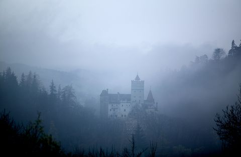 Pay a Spooky Visit to Count Dracula's Castle