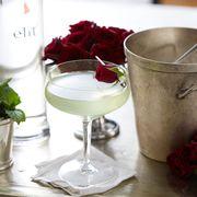 Drinkware, Ingredient, Serveware, Glass, Petal, Drink, Tableware, Dishware, Liquid, Carmine,