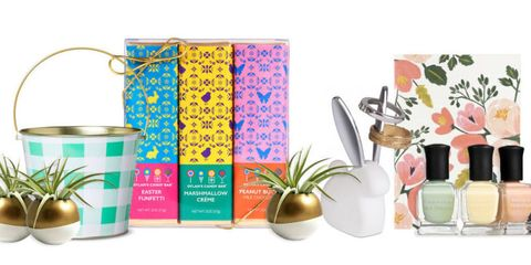 Flowerpot, Botany, Interior design, Flowering plant, Peach, Houseplant, Plant stem, Tin, Root, Cylinder,