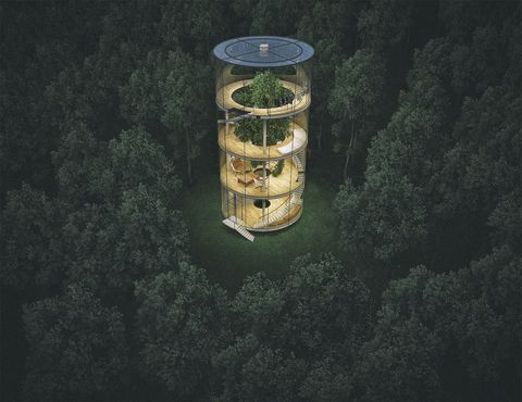 This Isn't A Glass House; It Isn't A Tree House Either