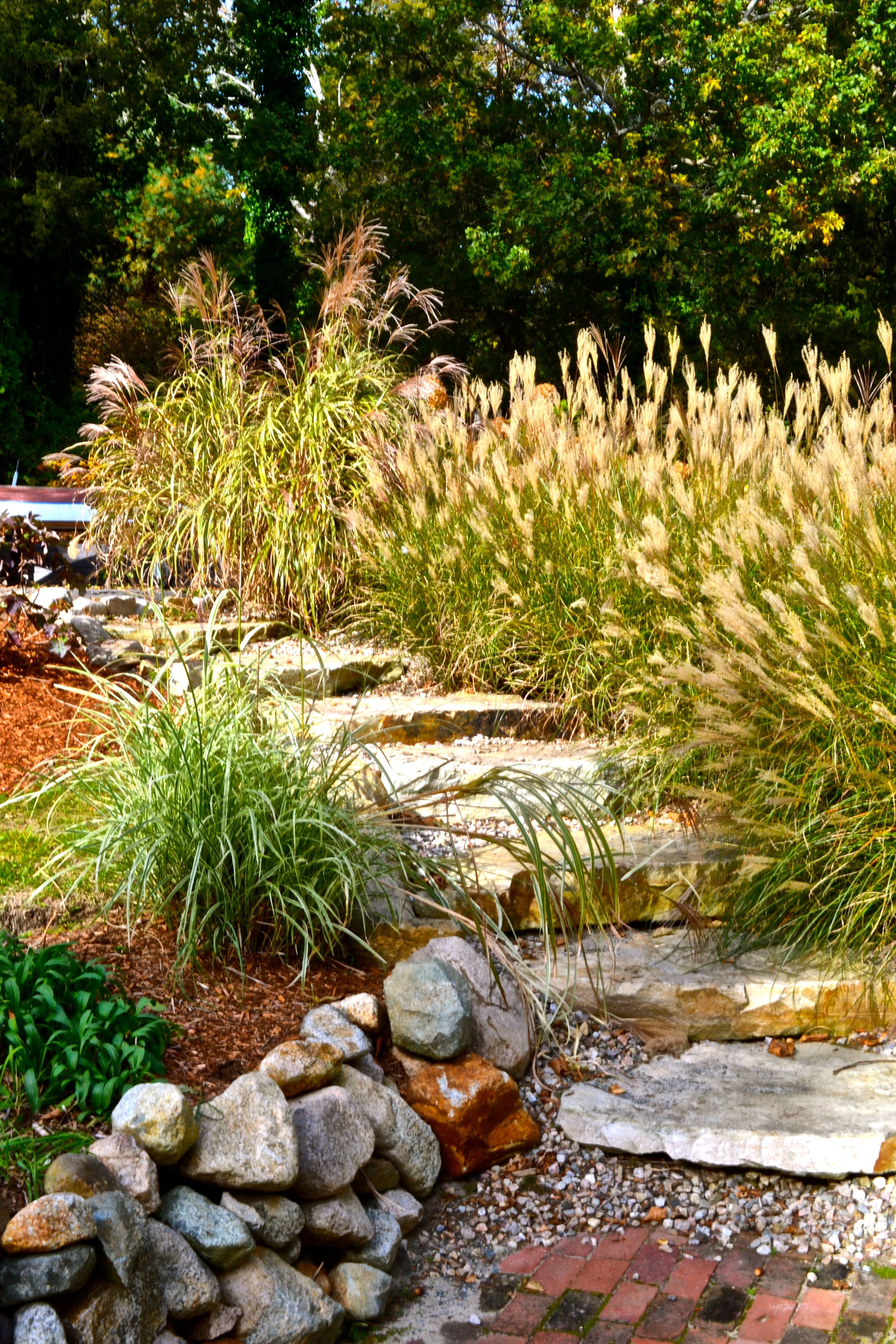 Backyard Landscaping Idea 17 low maintenance landscaping ideas – easy backyard landscape