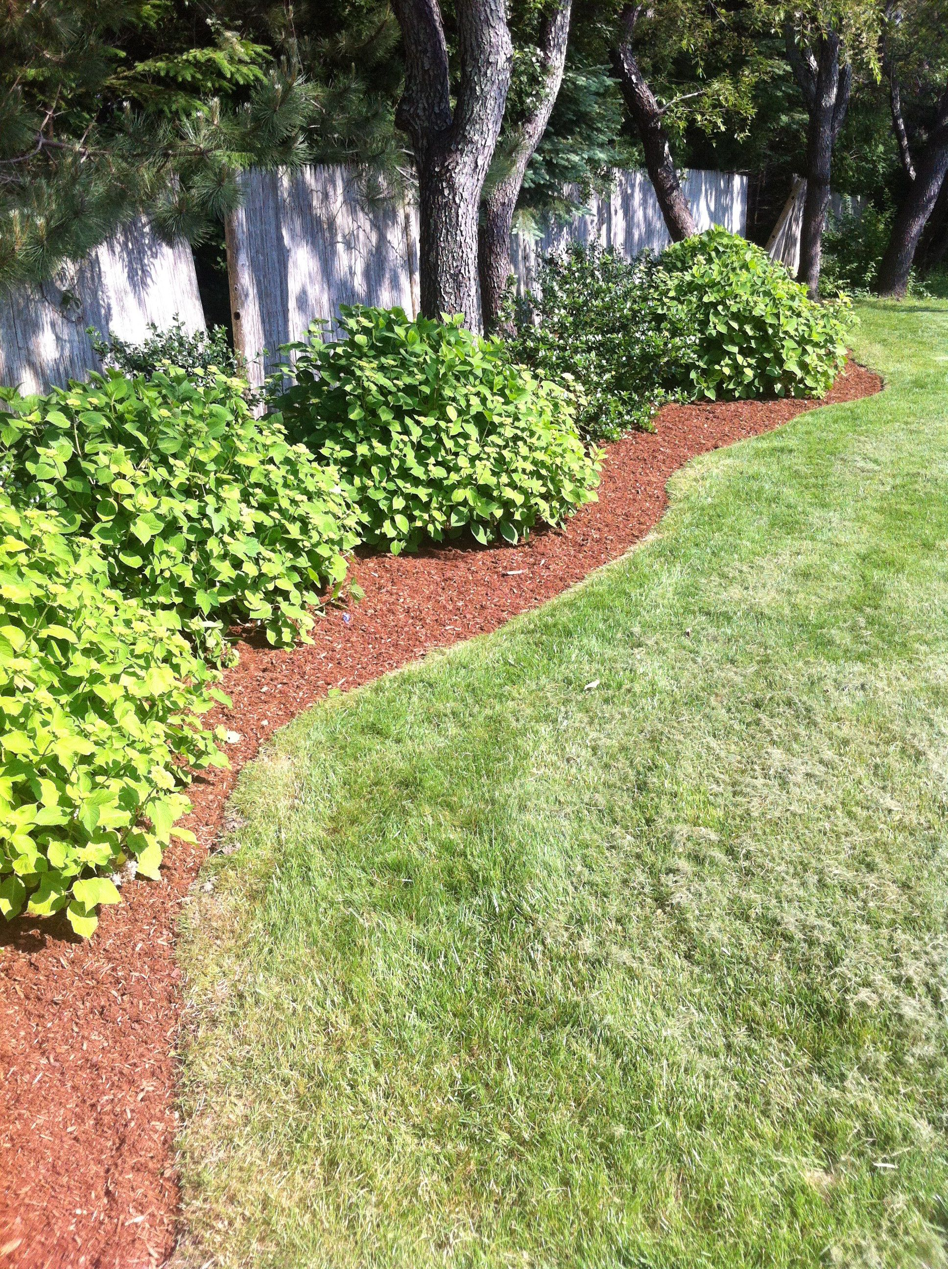 Lovely Low Maintenance Landscaping Ideas